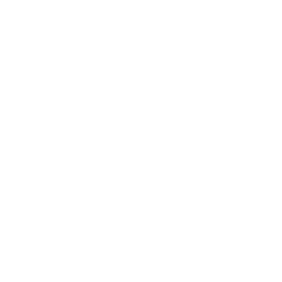 Childrens Place The
